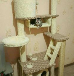 Complex for cats, kittens with a house