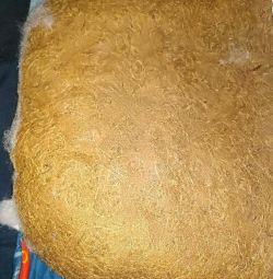 Στρώμα καρύδας στο καροτσάκι