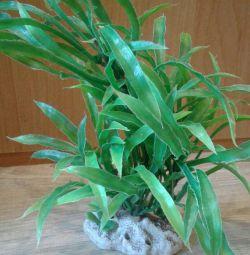 Artificial plant for terrarium