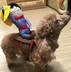 ιμάντα για σκύλους
