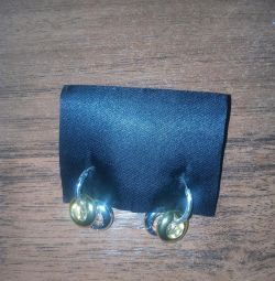 Σκουλαρίκια