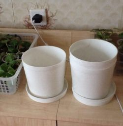 Pots for indoor. Colors, New - 3 Pieces