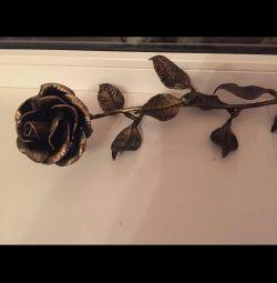 Роза вечная