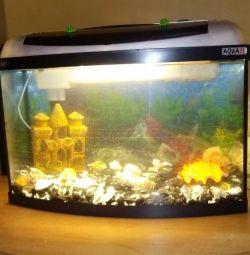 Панорамный аквариум на 50-60л