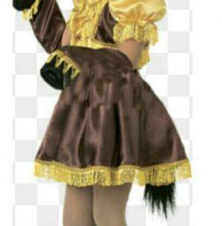Costumul calului lui Silva