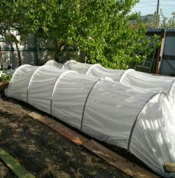 Greenhouse-greenhouse
