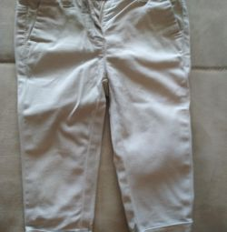 Bentetton breeches