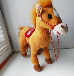 The horse is musical.