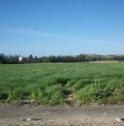 Residential fields in Alambra Village, Nicosia