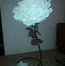 Floor lamp. Bra.
