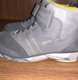 Ανδρικά παπούτσια - μπότες geox
