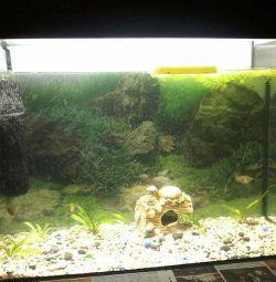акваріум 101л