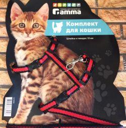 γάτα και λουρί