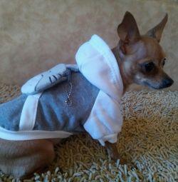Hoodies για σκύλους σε ποικιλία