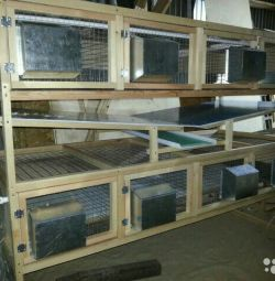 Feeding unit for young animals (rabbits)