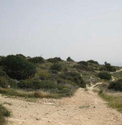 Field in Agias Fylaxeos,Limassol