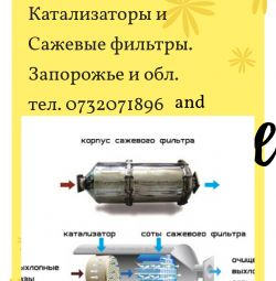 Buy a car Catalyst and particulate filter Zaporozhye
