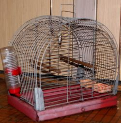 Vintage Soviet cage with iron pallet