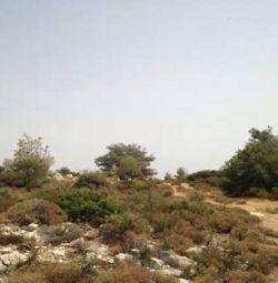 Το πεδίο στο Πάνω Κυβίδες Λεμεσού