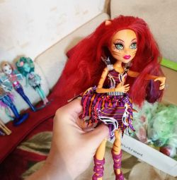 The doll is rare. Monster High. Tora circus