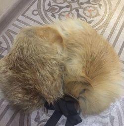 Collar, Boa Fox