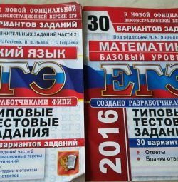 Examination Mathematics, Russian