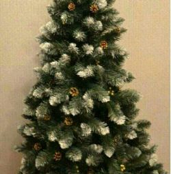 Fir-trees ? CANADIAN PREMIUM + Gift + Delivery!