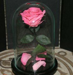 Trandafir într-un mini flacon
