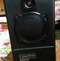 The speaker is in excellent condition