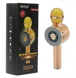 Микрофон Колонка Радио с изм.голоса WS-668 LED