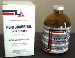 Buy Nembutal online