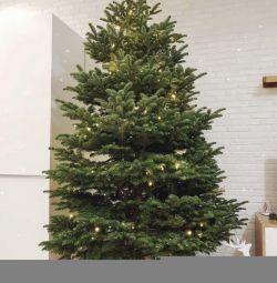 Νέο Έτος με παράδοση δανική