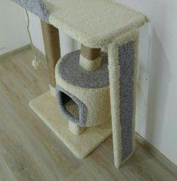 Pisoi, complex de pisici