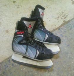 Skates dm