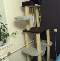 Complex pentru pisici cu pisoi