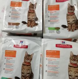 For adult cats, Hills 2 kg