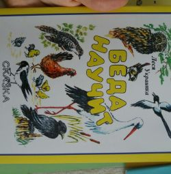 New fairy tale book