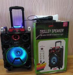Karaoke column. Bluetooth.