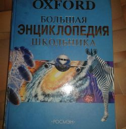 Enciclopedie a elevului