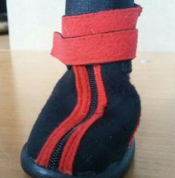 Dik ayakkabılar!