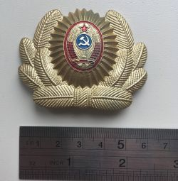 Insigna URSS