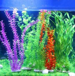 Decor and artificial plants for the aquarium
