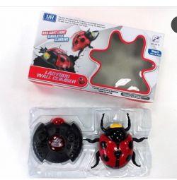 Ladybug on control