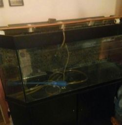 Aquarium with a pedestal