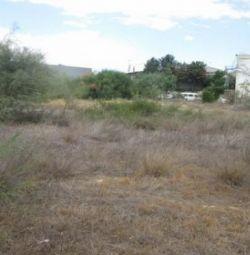 Field in Strovolos, Nicosia