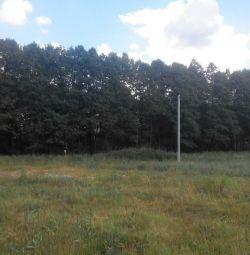 Shatura district, village Vlasovo