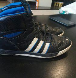 Adidas sneakers (original)