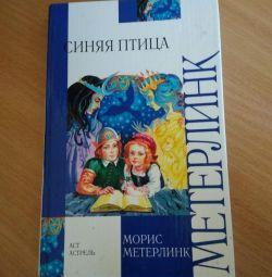 Βιβλίο για τα μπλε πουλιά
