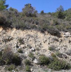 Cinci câmpuri în Moniatis, Limassol