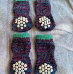 Κάλτσες σκυλιών